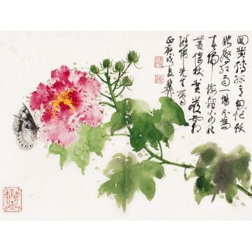 谢稚柳庚戌(1970)年作蝶恋花镜框设色纸本