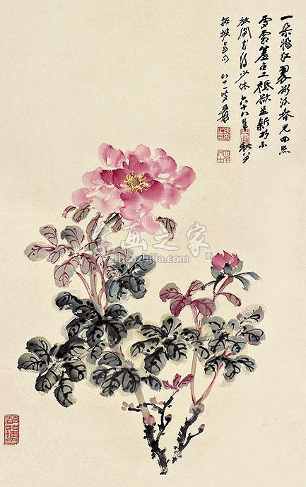 张大千花卉字画之家