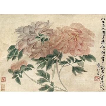 江寒汀花卉镜片纸本