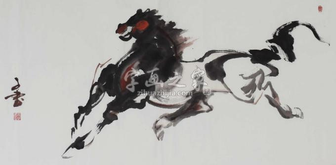史子书国画动物奔马图字画之家